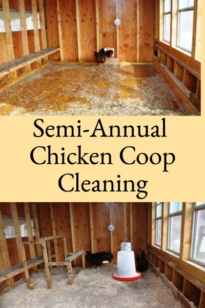 Semi-Annual Chicken Coop Cleaning