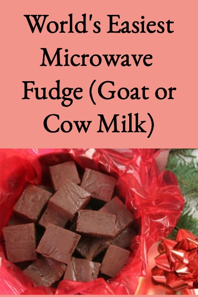 World's Easiest Microwave Fudge (Goat or Cow Milk)