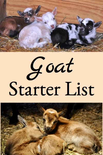 Here's a list of items that are good to have on hand when you start your dairy goat herd.
