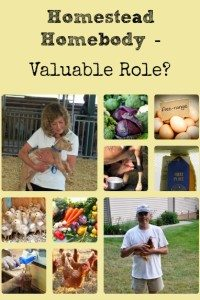 Homestead Homebody – Valuable Role?