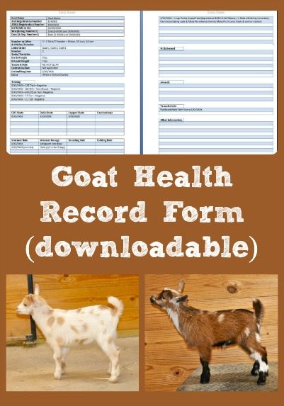 goat health record form  downloadable