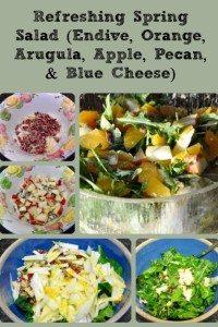 Refreshing Spring Salad (Endive, Orange, Arugula, Apple, Pecan, & Blue Cheese)