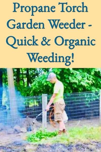 Propane Torch Garden Weeder Better Hens Gardens