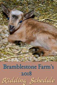 Bramblestone Farm's 2018 Kidding Schedule