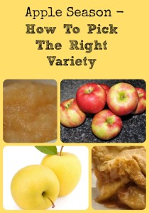Apple Season - How To Pick The Right Variety via Better Hens and Gardens