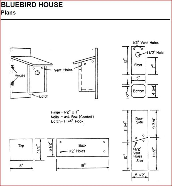 Bluebird House Plans Ohio Woodworktips