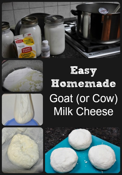 The Easiest Homemade Cheese via Better Hens and Gardens