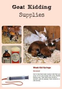 Goat Kidding Supplies via Better Hens and Gardens