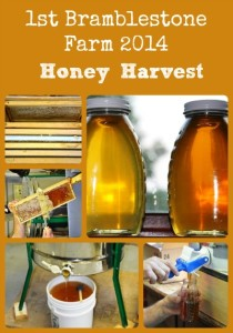 How Honey's Harvested - via Better Hens and Gardens
